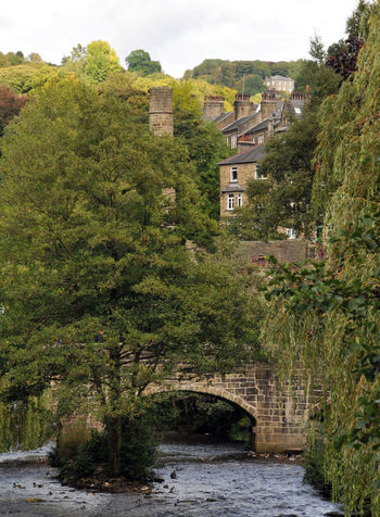 river and old packhorse bridge in hebden bridge west yorkshire Hebden Bridge Yorkshire Architecture Beauty In Nature Bridge Building Exterior Built Structure City Day Growth House Nature No People Outdoors River Scenics Sky Tranquility Tree Water