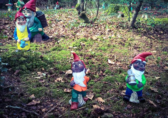 Devon Gnome Gnomes Gnomeworld Miniature Miniatures Mobile Photo Mobile Photography Mobilephoto Mobilephotography Sculpture Sculptures