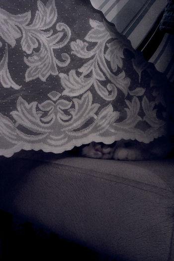 Uyuyangüzel