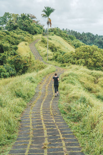 Plant Rear View Tree Nature Grass Full Length One Person Footpath Green Color Walking Real People Direction Lifestyles Growth The Way Forward Landscape Leisure Activity Day Sky Outdoors Running Runner New Beginnings