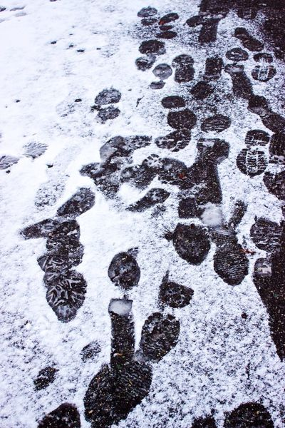 12 Days Of EyeEm Be careful where you thread, ice patches everywhere. Cold Winter Snap Cold Temperature Winter Weather Frozen Snow Shoe Prints Outdoors Vancouver, Canada Vancouver BC