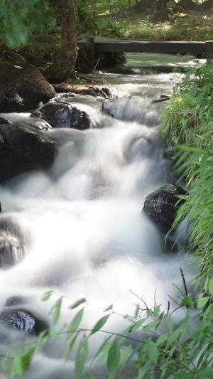 NDフィルター って面白いですね〜(≧∇≦) Nature Japan 水流 四季の里