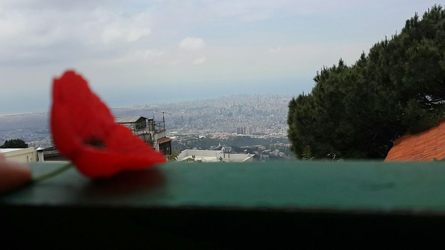 Poppy Poppysmc In A Blur Red Cityscapes Mountains View From Above