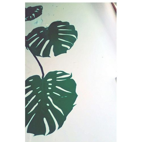 Im too sick to even study, I've hardly gotten out of bed all day. It's so shit. At least I can still look at my cute wall painting.🍃🌿🍀 Sicklife Wallpainting Plants Saveme Monsteria