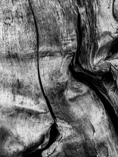 Abstract Abstract Photography B&w Backgrounds Beauty In Nature Black & White Black And White Black And White Photography Black&white Blackandwhite Blackandwhite Photography Close Up Close-up Detail Driftwood Hawaii IPhone Iphone7 Kona Kona Hawaii Nature No People Outdoors Textured  Wood EyeEmNewHere