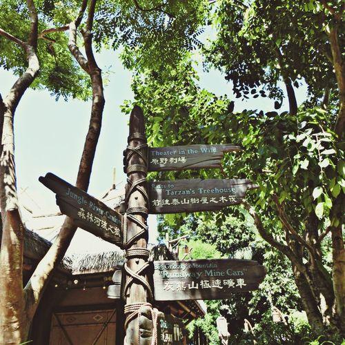 Ng's TraveLog Disneyland trip
