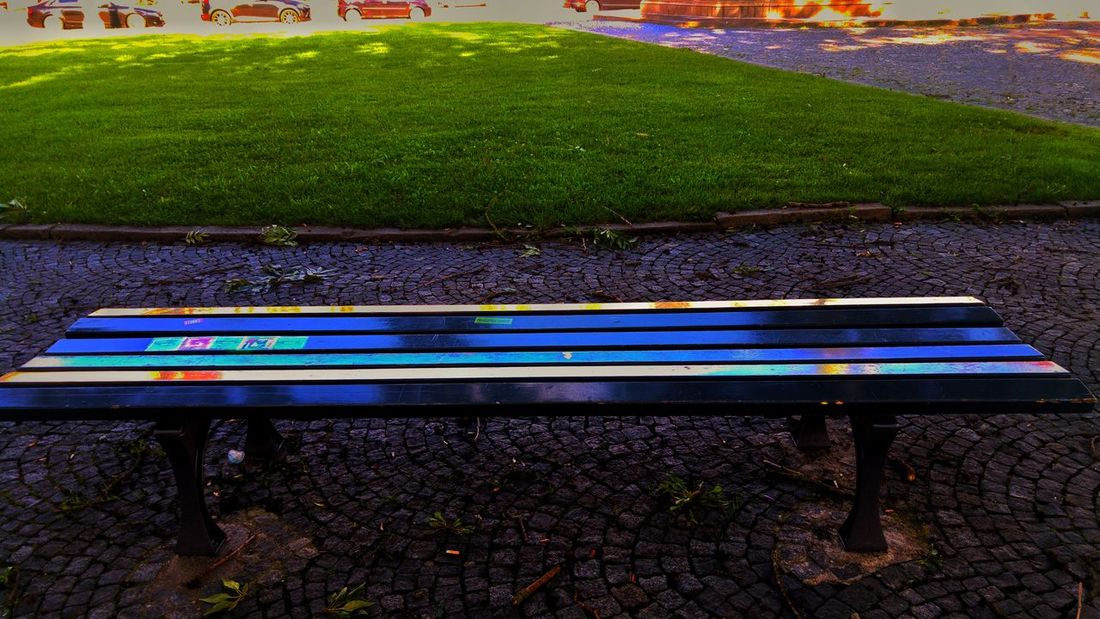 Park - Man Made Space Day Outdoors High Angle View Growth No People Nature Grass Bench Seat Resting Place