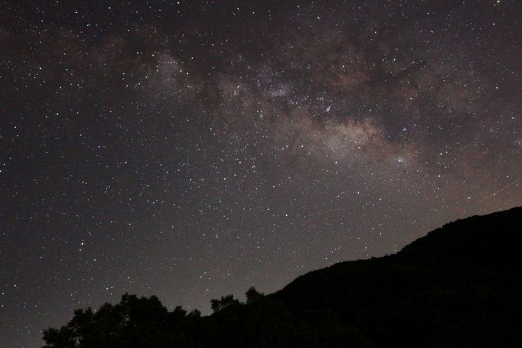 Silhouette Landscape Against Starry Sky