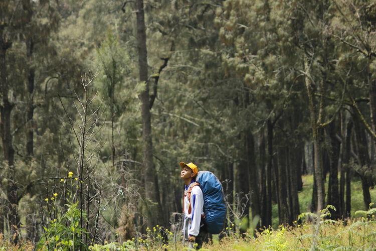 Hiking in arjuno mountain