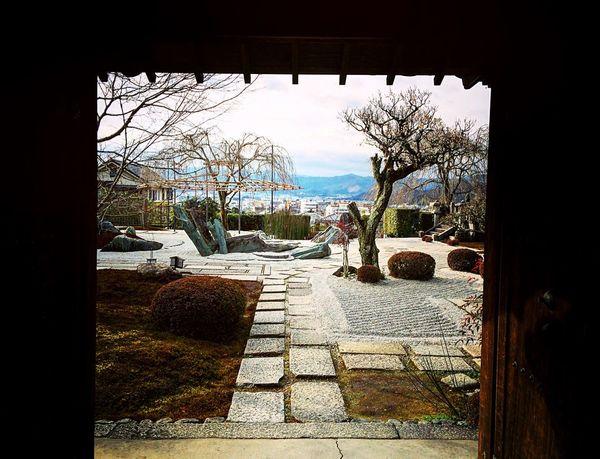 園光寺 一乗寺 京都 庭園 Kyoto 寺社仏閣 Relaxing
