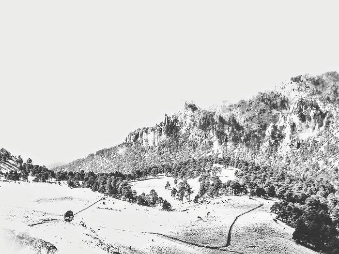 old mountain Mountain Snow Bird Sky Close-up Flock Of Birds Bird Of Prey Migrating Pigeon Hawk - Bird Large Group Of Animals Snowcapped Mountain Seagull Falcon - Bird Flock Of Sheep Dove - Bird Bald Eagle Hawk Avian Pixelated Spread Wings Rushing Eagle - Bird Owl Eagle Geese Vulture