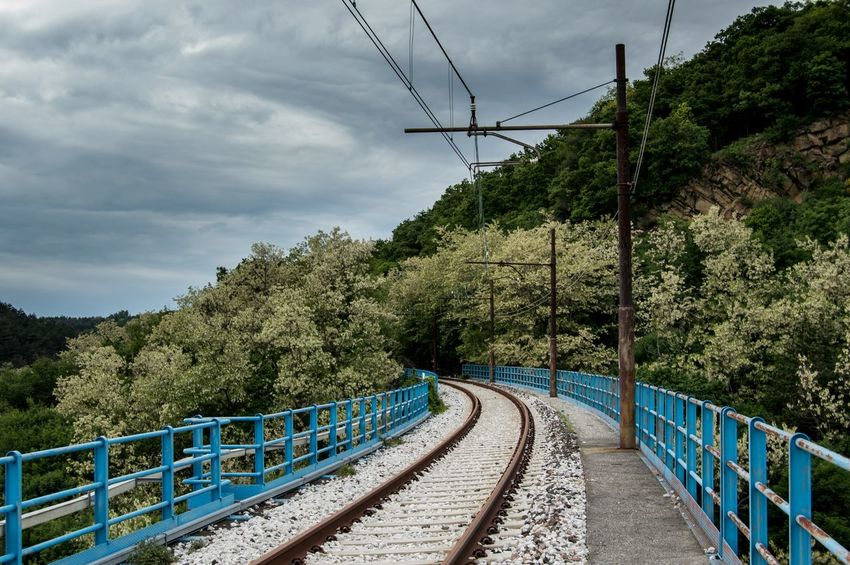 Cloud - Sky Cable Connection Tree Outdoors The Way Forward Day Sky No People Electricity  Nature Telephone Line Railway Railway Track Tree Travel Destinations Photography Nature Wood The Great Outdoors - 2017 EyeEm Awards