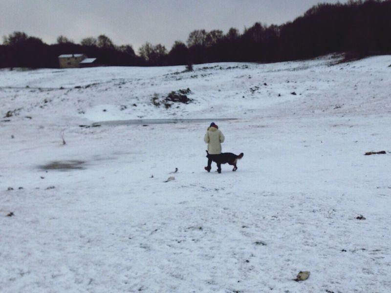 Walking Snow ❄ Montelivata Dog