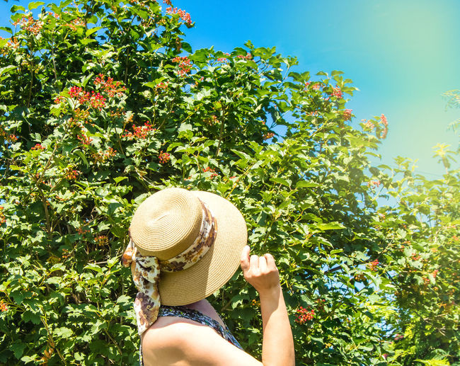 A happy young woman in a romantic hat enjoys the sunshine in a summer park, looks at the sunny sky,