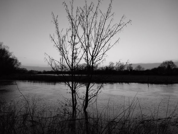 Creative Light And Shadow Colour & Light Landscape_photography Light And Shadow Monochrome Nature Photography Waterscape Tree Art Imagination Water