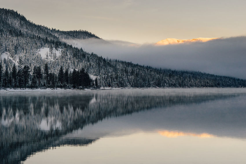 Winter sunrise at Donner Lake, California. California Truckee  Winter Beauty In Nature Cold Temperature Fog Lake Landscape Mountain Mountain Range Nature Outdoors Pine Tree Reflection Scenics Sierra Nevada Ski Sky Snow Sunset Tranquil Scene Tranquility Water