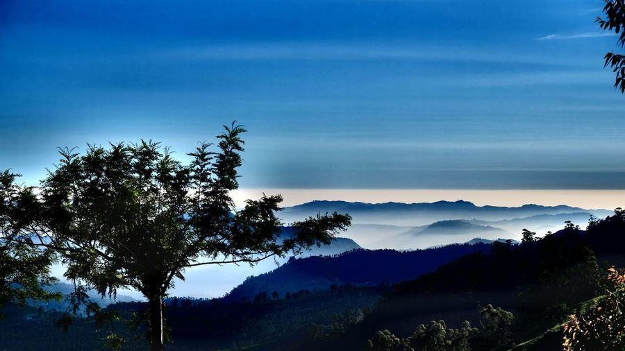 Mountainview Foggy Landscape Cloudy Morning Tree Nature Sky Beauty In Nature Tranquil Scene Scenics Silhouette Landscape Mountain Outdoors Cloud - Sky Tranquility No People Day