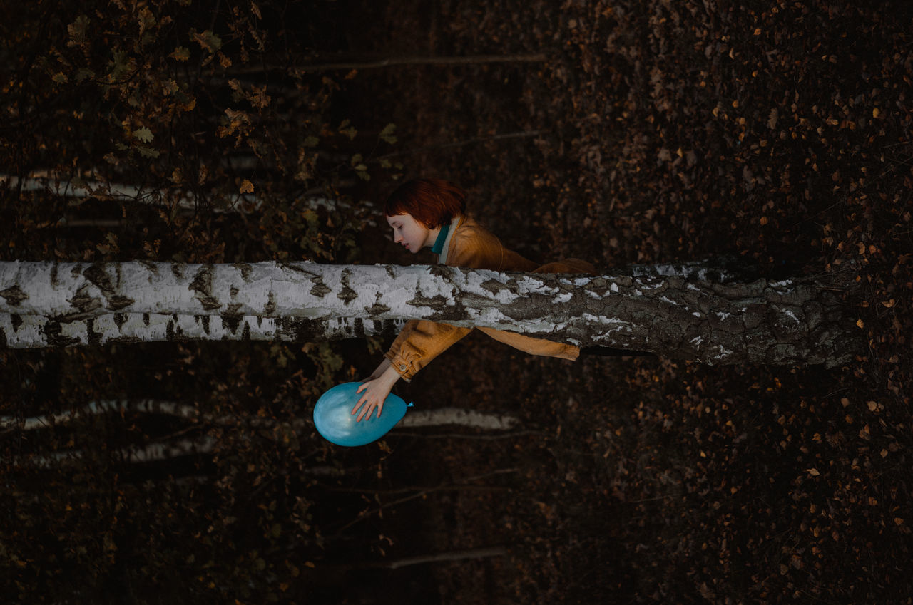 HIGH ANGLE VIEW OF PERSON ON TREE TRUNK