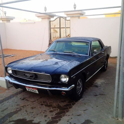 My bro car ? mustang 1966