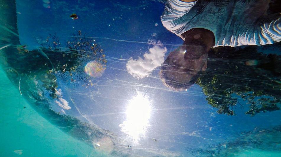Ensaio Amador Flowes Mar Nature Natureza 🐦🌳 Reflex Reflexo  Sea And Sky Tiny World