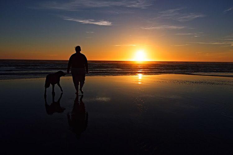 Sunset Beach Best Friend Moclips WA