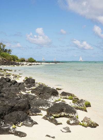 Mauritius Water Nautical Vessel Sea Beach Sailboat Sand Palm Tree Summer Yacht Snorkeling Seascape Coastline Bay Of Water Tropical Tree Lagoon Turquoise Colored Calm Reef Rocky Coastline Ocean