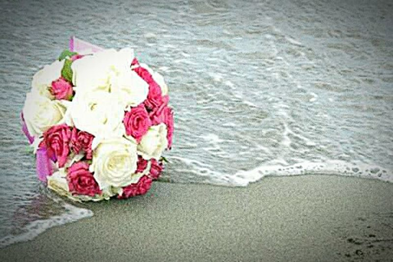 Single is not a status, it's a choice.. December Showcase: December Regrowth Life Is A Beach