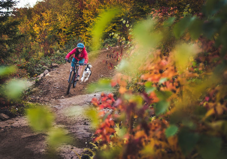 Person riding bicycle in forest during autumn