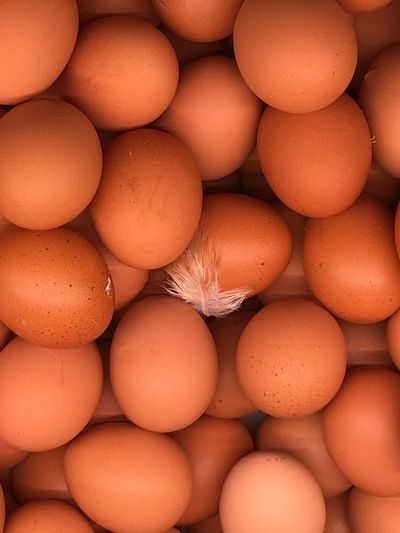 Eggs Chickens Food And Drink Food Healthy Eating Freshness Wellbeing Egg Full Frame Backgrounds No People In A Row Close-up Brown Arrangement Large Group Of Objects Raw Food Organic Indoors  Retail  Abundance Nature