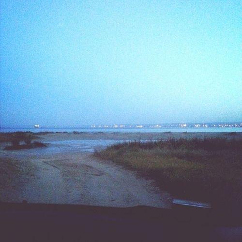 Path Sunrise Indiedentro