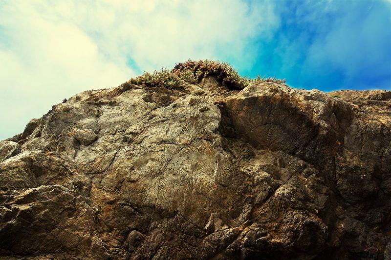 Looking up a giant rock. Sonomacounty California Coast Canon