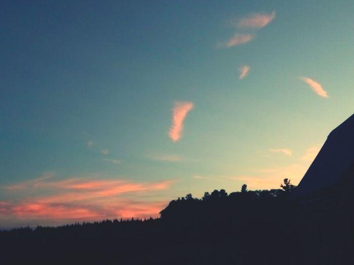 Silhouette Sunset Tranquil Scene Dark Cloud Outdoors Dramatic Sky Tree Blue Calm