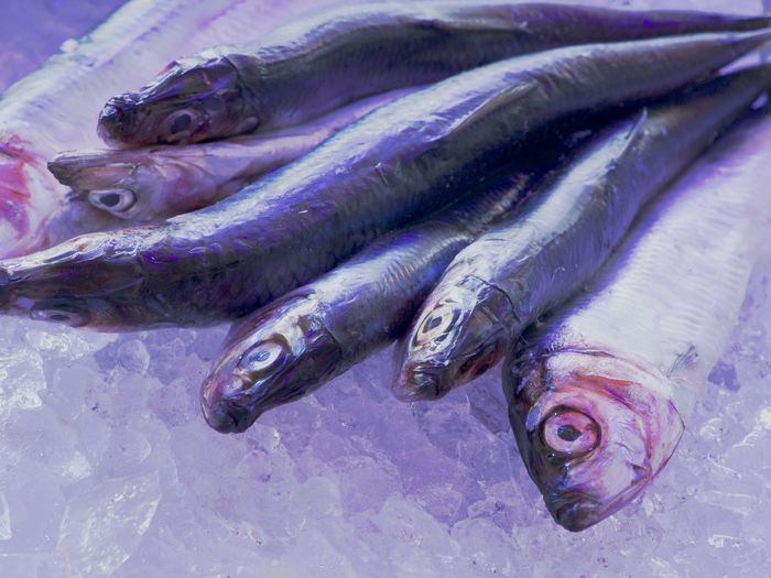 On Ice Close-up Crashed Ice Day Fish Fish Market Food Food And Drink Freshness Healthy Eating Market No People Raw Food Retail  Seafood