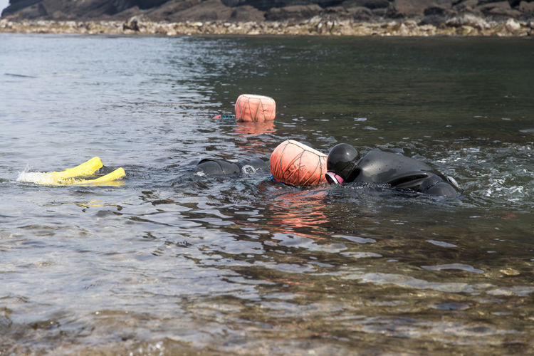 haenyeo who is a female diver picking up seaweed and sea food Diving Female Diver Haenyeo JEJU ISLAND  Pick-up Of Seafoo Pick-up Of Seaweed Sea Seaside