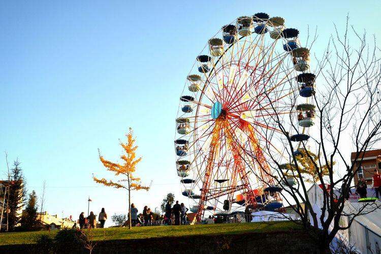 Spinning Ferris