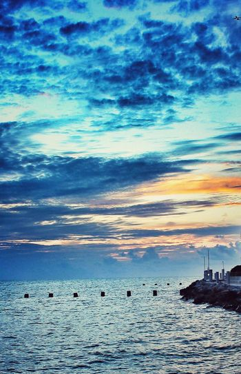 No People Sky Animals In The Wild Beauty In Nature Outdoors Sea Nature Landscape Sunset Scenics Tranquility Large Group Of Animals Horizon Over Water Beach Day Animal Themes Water Bird