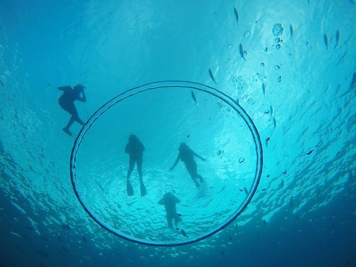 Swimming in a giant bubble The Week on EyeEm Snorkeling Snorkeling Adventure Water Bubles Eyemphotography Scuba Diving Underwater Swimming UnderSea Water Silhouette People Adventure Aquatic Sport Sea Life Sea Day Nature Sports Team Outdoors Blue Beauty In Nature Leisure Activity