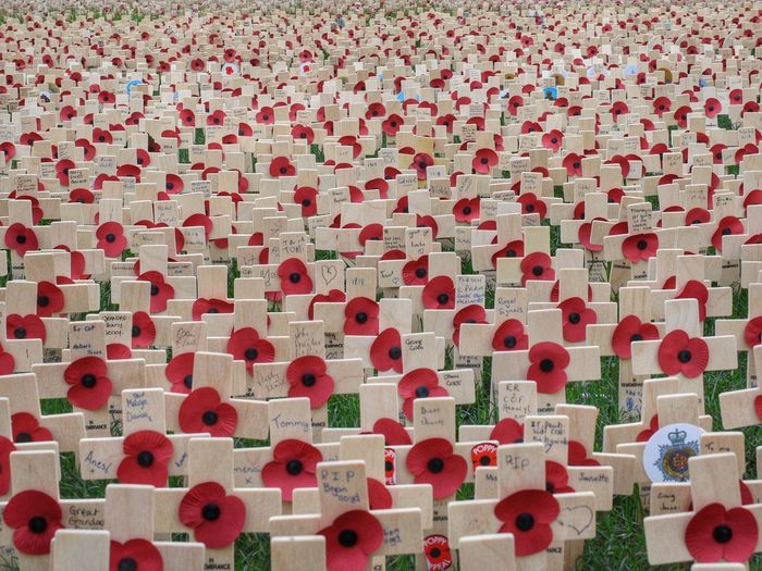 Red Large Group Of Objects No People Full Frame Poppy Poppies  Crosses Remembrance Remembrance Day Remembrance Sunday
