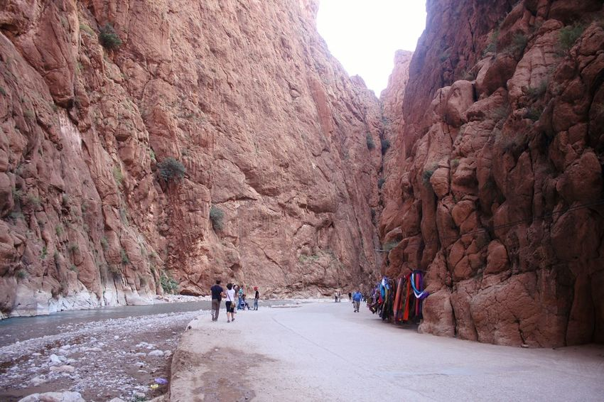 les gorges dades morocco Tree Road Mountain Cliff Rock - Object Rock Face Rock Formation Steep Landscape Rocky Mountains Geology