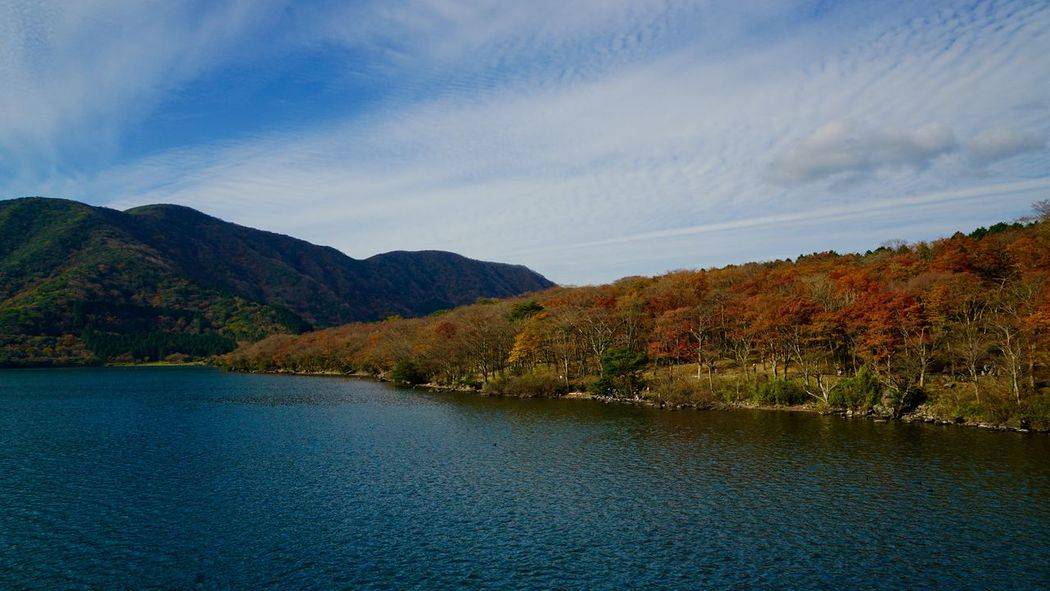 Hakone Japan Lake View Blue Sky Nature Traveling Photography Autumn🍁🍁🍁 Cloud And Sky Landscape Landscape_photography Nature_ Collection  Autumn Colors Ultimate Japan