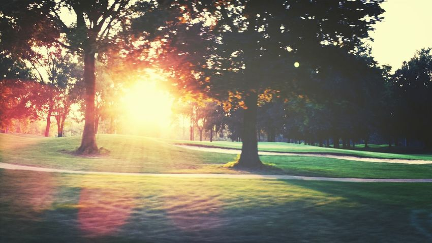 where i wish i was... second hole, harbor oaks golf club... Golf AMPt_community Boost Filter DroidEdit