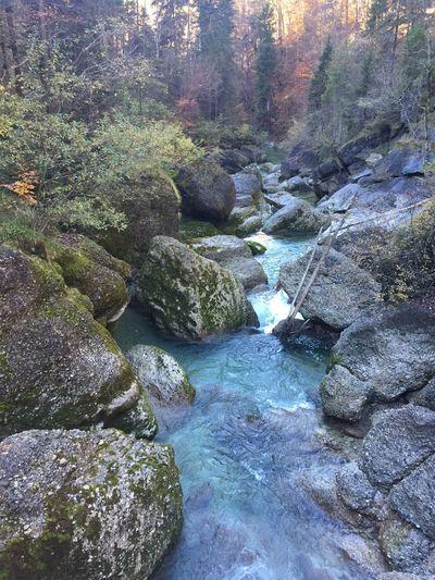 Beauty In Nature Bayern Allgäu Alps Water