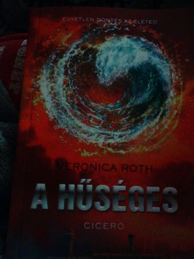 Veronicaroth Divergent Insurgent  Book Christmas Gift Gift Presents From My Sister Allegiant Theo James ????????