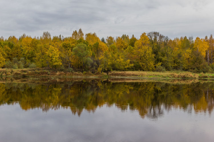 Reflection of trees in calm lake against sky