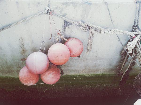 Balls HongKong Wharf Exploring