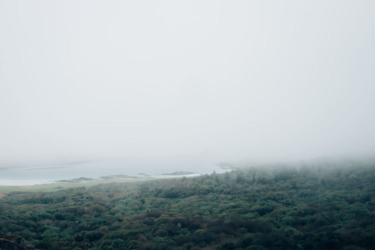 Ireland Beauty In Nature Cold Temperature Day Fog Forest Freshness Hazy  Landscape Lush Foliage Mist Mountain Nature No People Outdoors Ring Of Kerry Scenics Sky Tranquil Scene Tranquility Tree Weather Winter