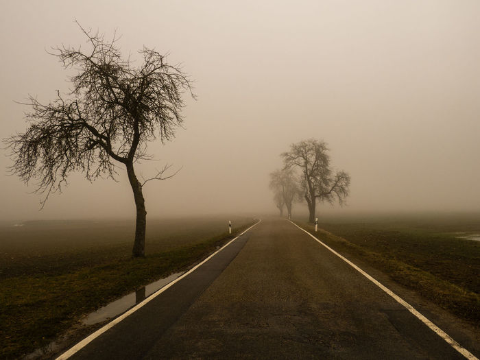 Empty road by trees against sky during foggy weather
