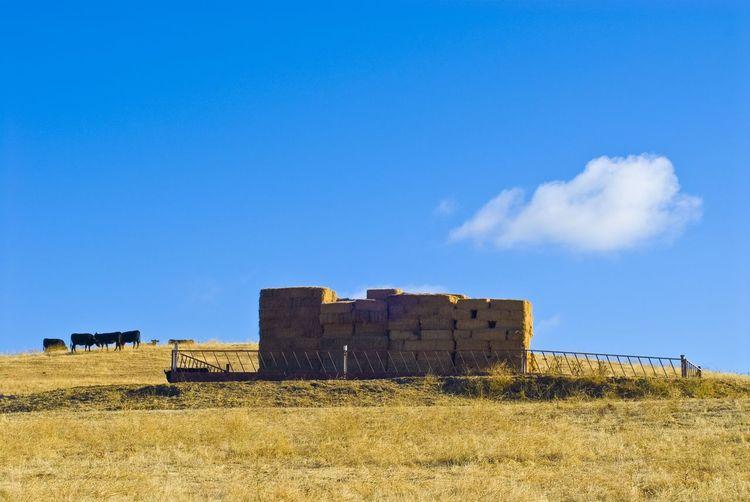 Hay Bales On Grassy Field Against Blue Sky