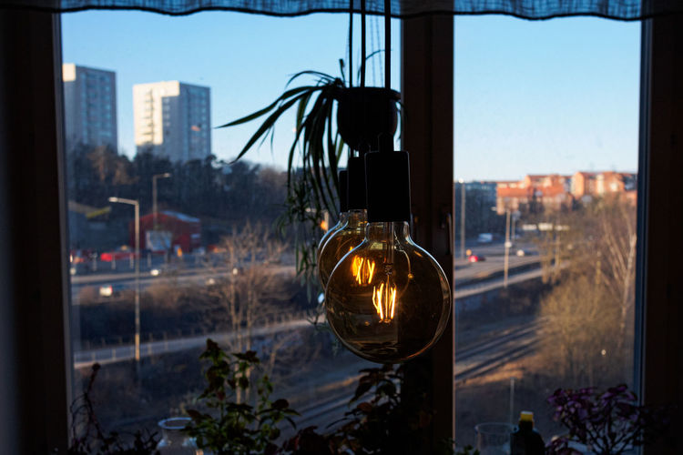 Light bulbs by the window with a background view of a highway and residential towers