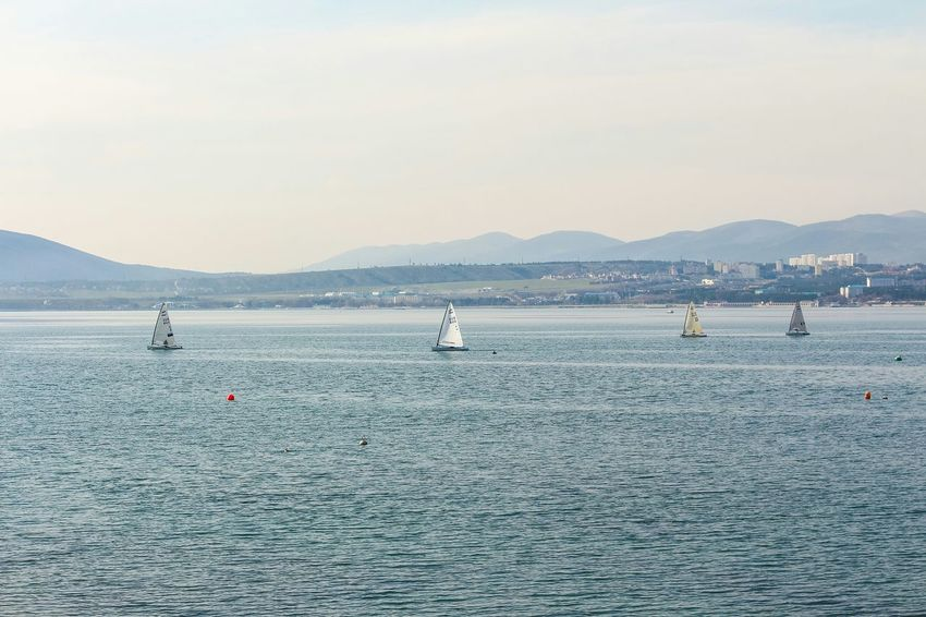 Sea Water Day Outdoors Recreation  Black Sea Blue Sailboat Sailing Boat Sailing Vessel Place Of Heart Summer In The City